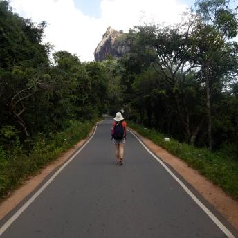 Cesta k Sigiriya Rock
