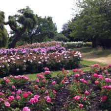 Zahrady v Londýně