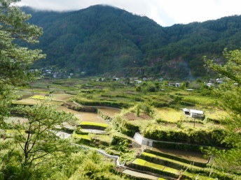 Rýžové terasy po cestě ze Sumaguing Cave