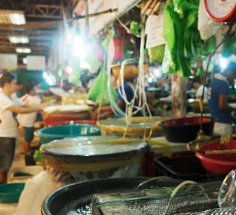 Rybí trh Boracay